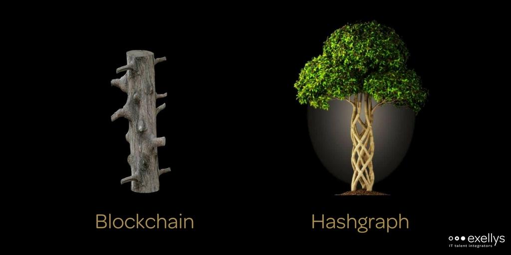 hashgraph versus blockchain