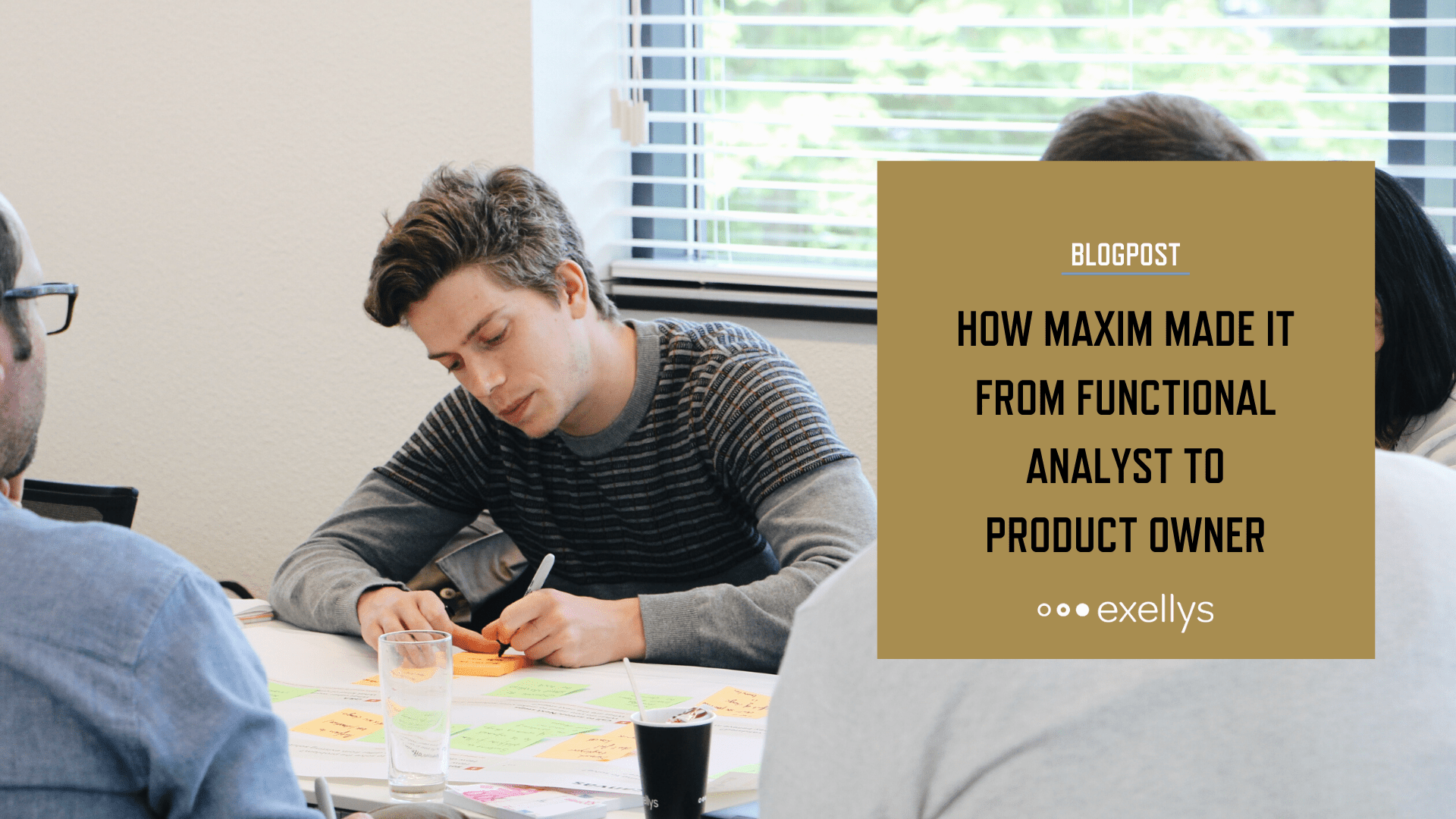 How Maxim made it from Functional Analyst to Product Owner - LinkedIn share image